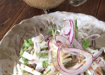 サラダソルトで 千切り野菜の彩りサラダ