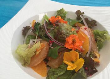 エディフルフラワーと柑橘のハーブサラダ