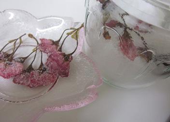 【レシピコンテスト銅賞】桜の塩漬け